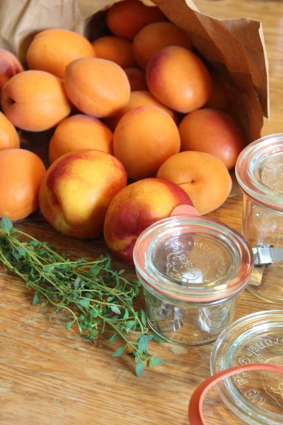 Aprikose-Pfirsich-Nektarine